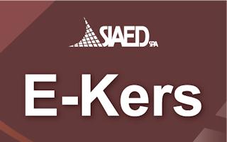 E-KERS1