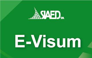E-VISUM1